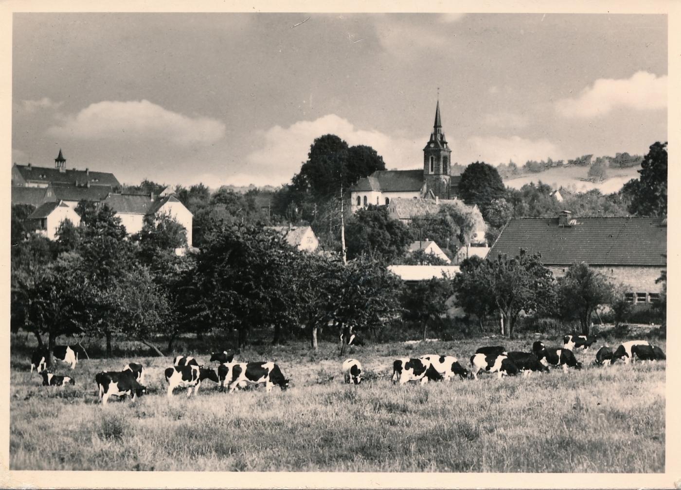 St.Nikolai, AK Handabzug Nowak Dresden